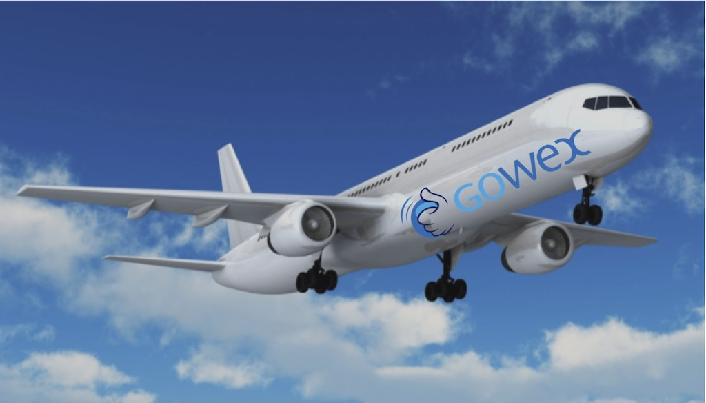 gowex avión